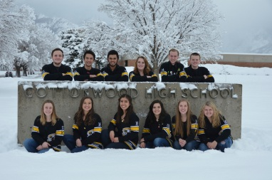 2015-16 Committee